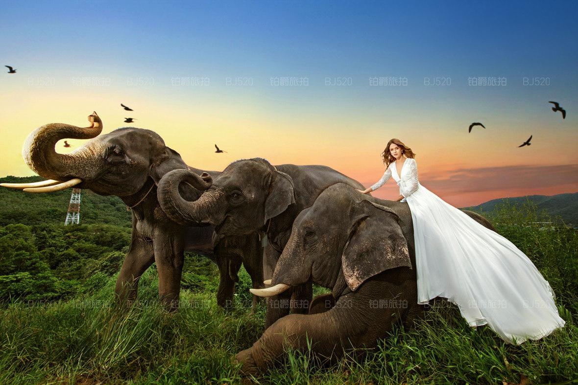 皇帝岛,芭东海滩,卡塔海滩,卡伦海滩;拍摄景点如下:) 景点特色:骑大象